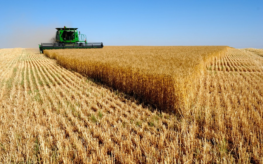 Combine-harvesters-for-sale