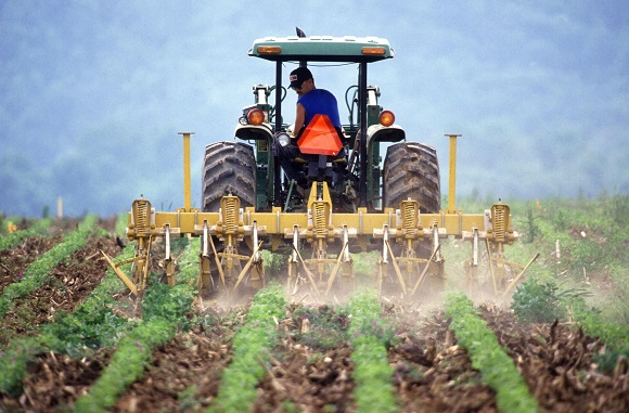 farming-in-sa