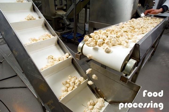 conveyor-belts-in-food-processing
