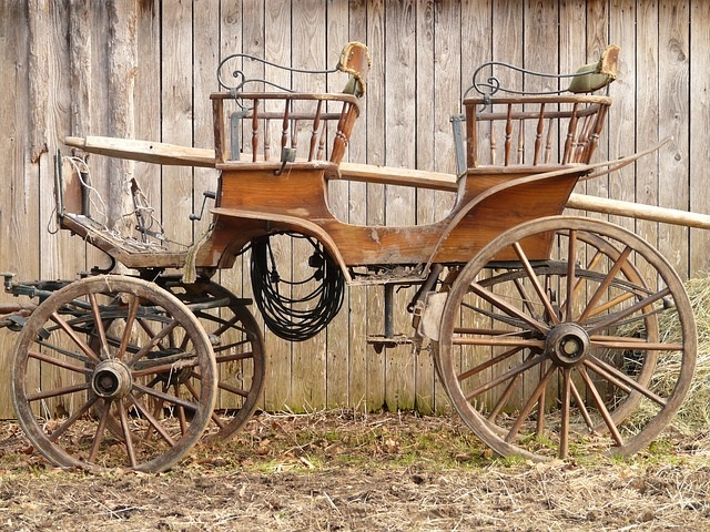 horse-cart-used-before-buses