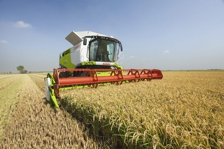 claas lexion 770 combine harvester for sale