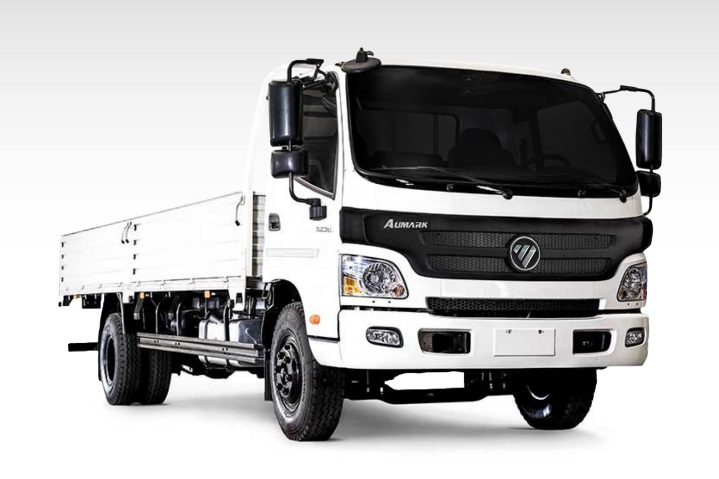 the bj1089 truck by foton