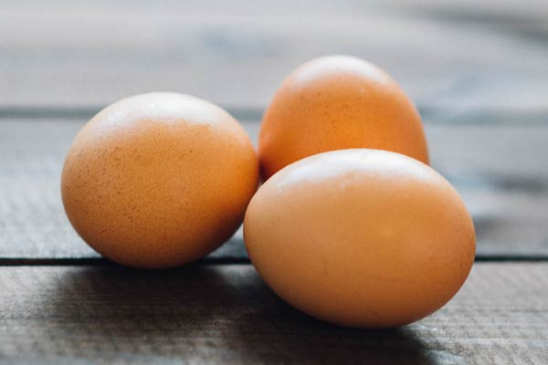 egg incubator for sale
