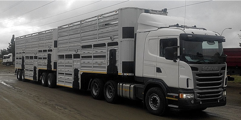 Livestock Trailers For Sale On Truck & Trailer