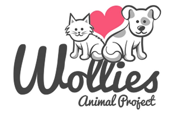 Give a Donation to Wollies Animal Project
